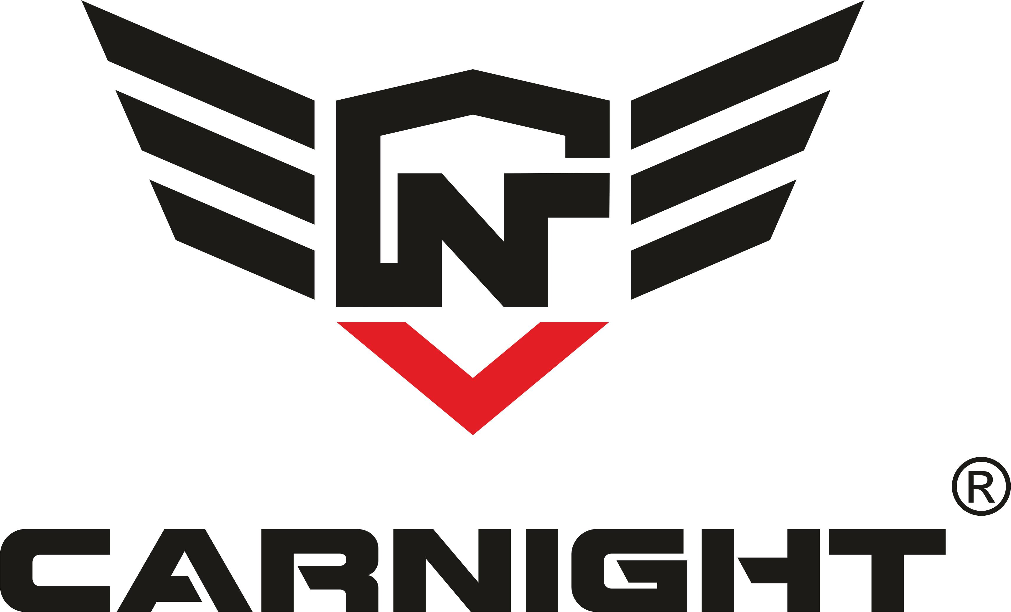 Carnight — Профессиональная автохимия  оптом от производителя в Пензе